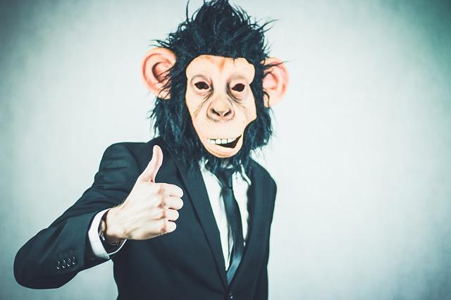 Monkey 2710658 640
